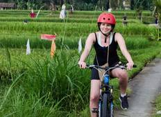 The Green Experience | Bali Tour