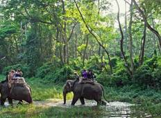 Chitwan Jungle Safari Package tour- 2 Nights 3 Days  Tour