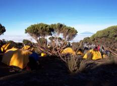 8 Days Machame Route Tour