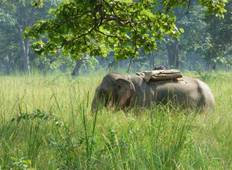 Bardiya National Park Luxury Tour Tour