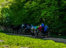 An Equestrian Adventure in Transylvania  (8 days, 7 nights, 6 days riding) Tour