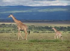 3 Days Maasai Mara Trip Tour