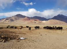 Seven day in Pamir Tour
