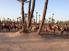 Medina and Mountains - 5 Days and 4 Nights Cultural Adventure in Marrakech  Tour