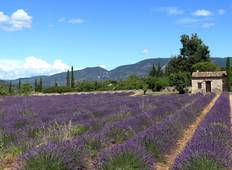 Burgundy & Provence (Avignon to Lyon, 2019) Tour