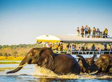 A Journey Through Botswana and Victoria Falls Tour