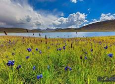 Exciting Tour to Deosai, Fairy Meadows, Rama meadows, Gilgit Baltistan, Pakistan Tour