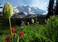 Mt. Rainier Nat\'l Park Hiking Tour