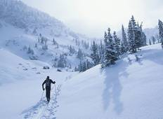 Yellowstone Winter Wonderland Ski Tour Tour