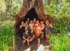 Margaret River & Beyond Accommodated Adventure Tour
