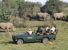 Eastern Cape Family Safari Tour
