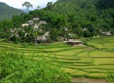 8 DAYS: HANOI BIKING - PU LUONG NATIONAL RESERVE TREKKING - TAM COC - HALONG BAY - CAT BA ISLAND Tour