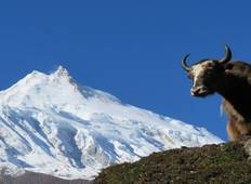Manaslu Circuit Trek (Larkey La Pass Trek) Tour