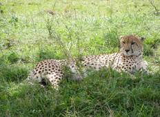 7D/6N Rift Valley Safari Tour