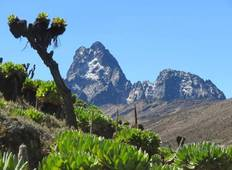 4D/3N Mount Kenya: Up and Down Sirimon Route Tour