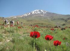 Damavand Climbing (South Face) Tour