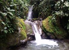 Ecuador North Andes and Cloud Forest 5 Days Tour