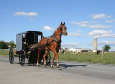 4-Day Amish Experience Tour