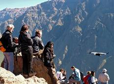 Trekking Descending Colca Canyon (03 Days/ 02 Nights) SHARED GROUP Tour