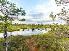 7 Days Self Guided Walking Holiday in Curonian Spit Tour