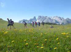 Hiking in the Dolomites (2019) Tour