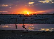 Family Botswana and Zambia Safari Adventure Tour