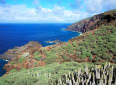 La Palma - Volcanoes and Cloud Forest Tour