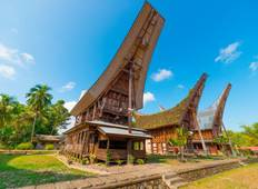 Discover Sulawesi (2019) Tour