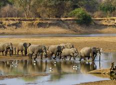 Malawi and South Luangwa (2019) Tour
