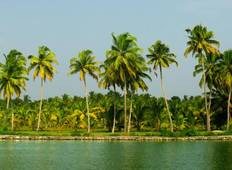 Real South India Tour