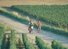 Chablis Vineyards Self-Guided Cycling Tour