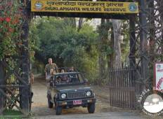 Shuklaphanta National Park Safari Tour
