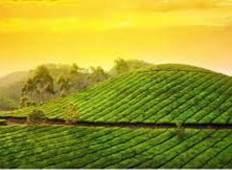 Exotic Kerala Tour Tour