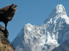 Everest Base Camp Luxury Trek Tour