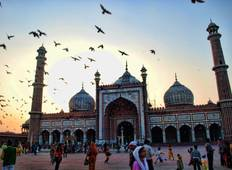 Golden Triangle Tour with Pushkar Tour