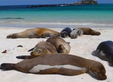 Galápagos — East, Central, & West Islands aboard the Eden Tour