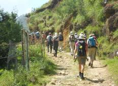 Trekking Through The Misty Mountain & Forest  From Ella, Haputale & Bandarawela Tour