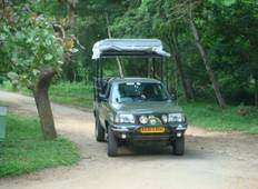 South India Wilderness tour Tour