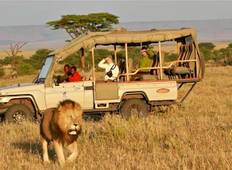 Samburu/Naivasha/Nakuru/Maasai Mara - Private Luxus Safari (6 Tage) Rundreise