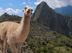Highlights of the Incas Tour