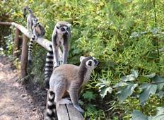 Madagascar Adventure Tour