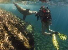 6 Day Galapagos Island Hopping Tour Tour