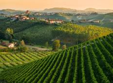 Piedmont vineyards and Ligurian Sea Tour