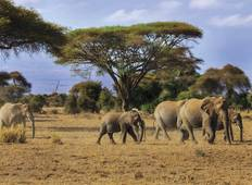 East Africa Adventure Tour