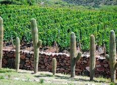 Vineyards & Scents of Argentina Tour