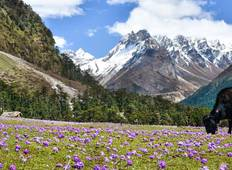 Sikkim & West Bengal Tour