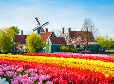 Springtime in Holland (port-to-port cruise) Tour
