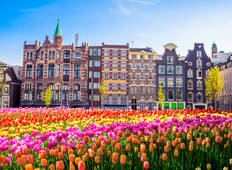 Springtime in Holland (port-to-port cruise) (from Amsterdam to Antwerp) Tour