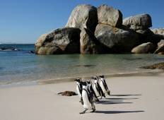 South Africa: Hike, Bike & Kayak Tour
