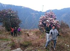 Ideal Langtang Valley Trekking Tour